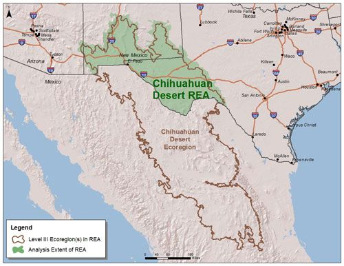 About - The Chihuahuan desert